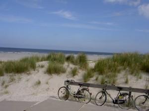 fietsen-op-vlieland_large